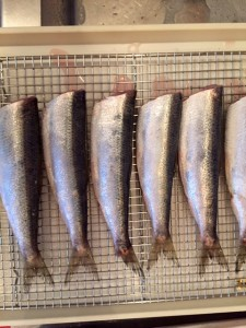 cleaned herring (2)