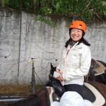Amanda horse
