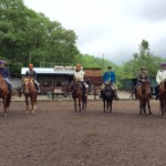 Horse group new